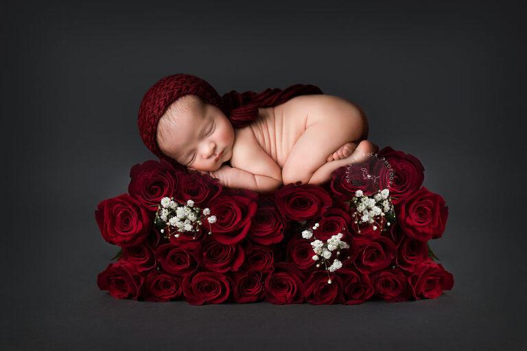 Valentines Day Newborn Baby Photograph - Connecticut newborn Photographer