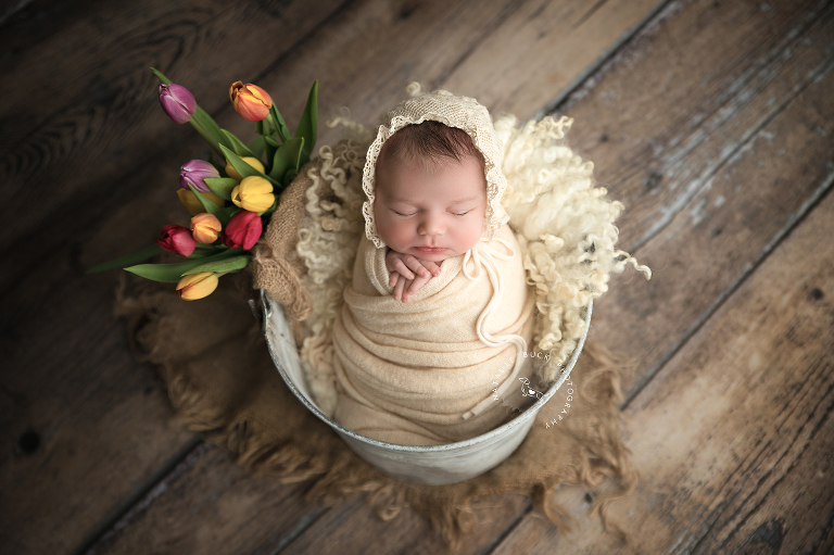 CT Newborn Photographer - Litchfield, Westchester, Fairfield County CT & NY