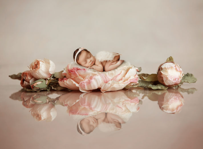 Best Newborn Photographer in Connecticut including Fairfield County CT, Litchfield County CT and Westchester County NY